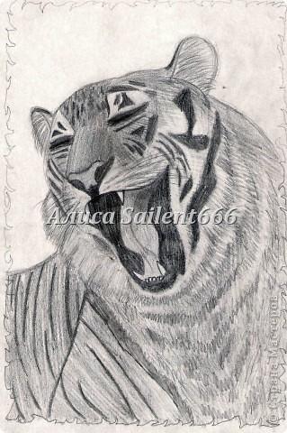 Рисунки карандашом фото 5