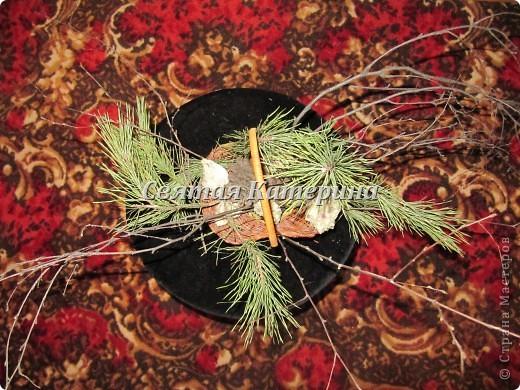 Ракушки, ветви ели, ветви  березы, шишки!  Просто навеяло! фото 2