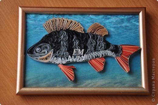 Свёкру -чемпиону России по рыбной ловле - в подарок конечно рыбину))) фото 1