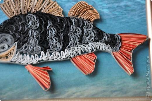 Свёкру -чемпиону России по рыбной ловле - в подарок конечно рыбину))) фото 3
