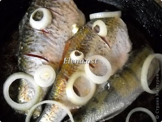 При копировании статьи, целиком или частично, пожалуйста, указывайте активную ссылку на источник! http://stranamasterov.ru/user/9321 http://stranamasterov.ru/node/148143 Продолжаю рыбную тему http://stranamasterov.ru/node/145422. Судак, карась, тарань - вот такое рыбное трио на столе у рыбака. Судак, фаршированный целиком, рыбные тефтели, рыба под майонезом, тарань вяленая, блинчики из рыбной икры - вот перечень сегодняшних блюд. фото 17