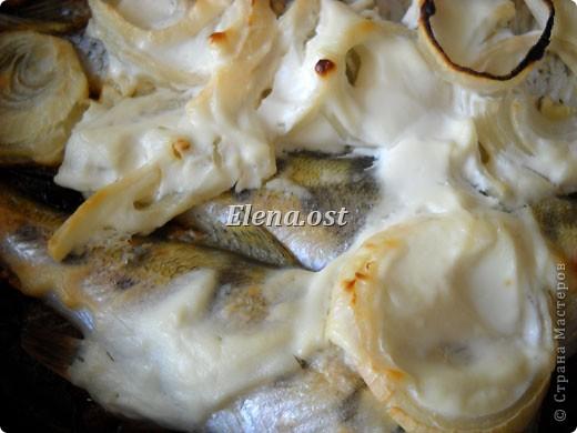 При копировании статьи, целиком или частично, пожалуйста, указывайте активную ссылку на источник! http://stranamasterov.ru/user/9321 http://stranamasterov.ru/node/148143 Продолжаю рыбную тему http://stranamasterov.ru/node/145422. Судак, карась, тарань - вот такое рыбное трио на столе у рыбака. Судак, фаршированный целиком, рыбные тефтели, рыба под майонезом, тарань вяленая, блинчики из рыбной икры - вот перечень сегодняшних блюд. фото 18