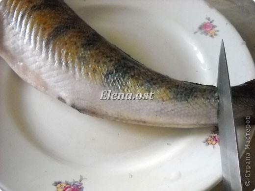 При копировании статьи, целиком или частично, пожалуйста, указывайте активную ссылку на источник! http://stranamasterov.ru/user/9321 http://stranamasterov.ru/node/148143 Продолжаю рыбную тему http://stranamasterov.ru/node/145422. Судак, карась, тарань - вот такое рыбное трио на столе у рыбака. Судак, фаршированный целиком, рыбные тефтели, рыба под майонезом, тарань вяленая, блинчики из рыбной икры - вот перечень сегодняшних блюд. фото 5