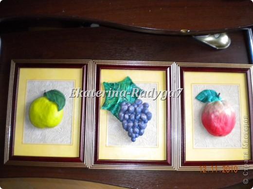 Мои фрукты фото 1