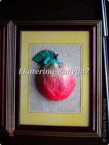 Мои фрукты фото 3