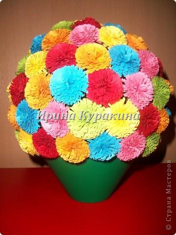 еще цветы фото 1