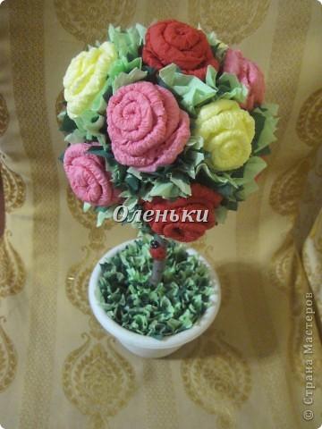 Наш сад растёт! После кофейного дерева http://stranamasterov.ru/node/154400 у нас родилось вот такое чудо - дерево из роз! Это так здорово, получаешь огромное удовольствие от проделанной работы. Хочется творить и творить! фото 4