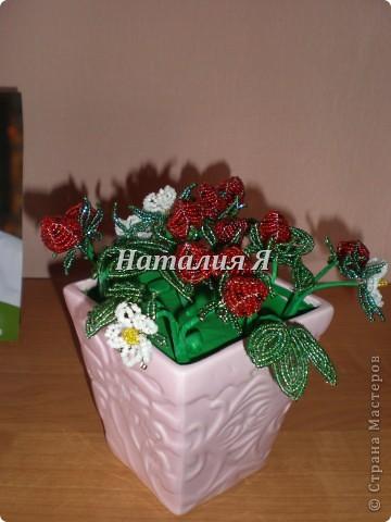Мои землянички)))  фото 1