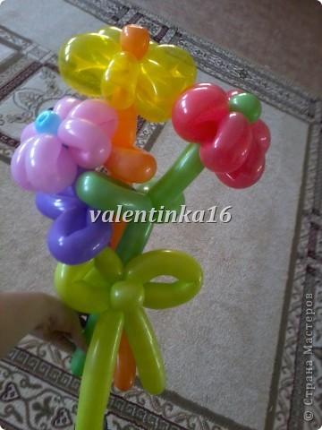 Мастер-класс Твистинг Цветы из шаров + МК Шарики воздушные фото 1