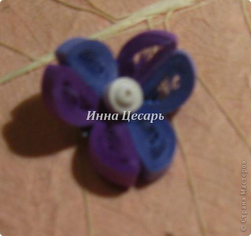 Фиолетовые цветы фото 7