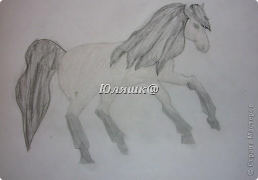 лошадь правда уже все рисунки 1000 раз перерисованные.... фото 1