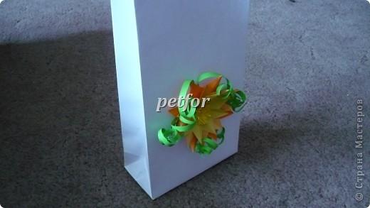 в таком пакете можно сделать дыроколом дырки под веревочки фото 1