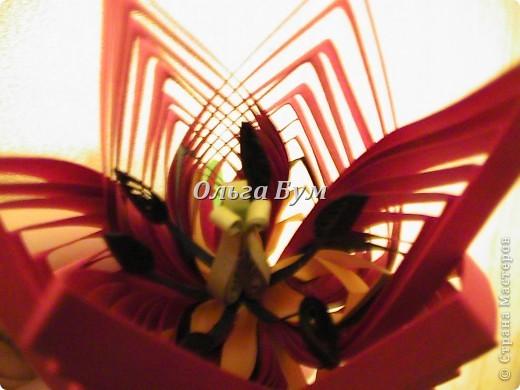 """С 8 Марта, Страна!!! Спешу представить мой тюльпан и новую форму лепестка!!! Не судите строго - это """"опытный образец"""". Немного рановато выкладываю, форма лепестка ещё не отработана, но в честь праздника хочется сделать ПОДАРОК! Тюльпан выполнен из ВЫВЕРНУТЫХ лепестков, как мне сказали в Центре, такую форму ещё НЕ видели. Так что претендую на авторство(!) фото 6"""
