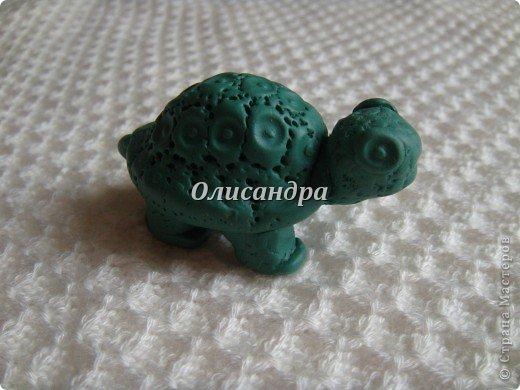 """Это моя вторая черепашка... Первая здесь... http://stranamasterov.ru/node/145175?t=670  Часто говорят ...""""позеленел от злости""""- это не про нее, она добрая..., а зовут Гена... в честь крокодила Гены ( такой замечательный мультик...) фото 1"""