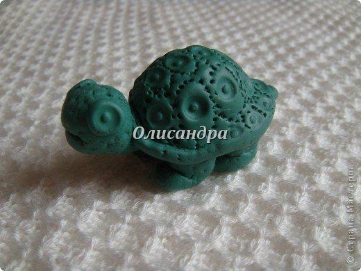 """Это моя вторая черепашка... Первая здесь... http://stranamasterov.ru/node/145175?t=670  Часто говорят ...""""позеленел от злости""""- это не про нее, она добрая..., а зовут Гена... в честь крокодила Гены ( такой замечательный мультик...) фото 3"""