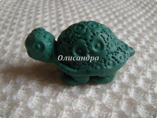 """Это моя вторая черепашка... Первая здесь... http://stranamasterov.ru/node/145175?t=670  Часто говорят ...""""позеленел от злости""""- это не про нее, она добрая..., а зовут Гена... в честь крокодила Гены ( такой замечательный мультик...) фото 4"""