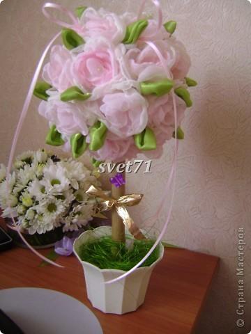 """Розовое дерево""""Светланка"""" фото 1"""