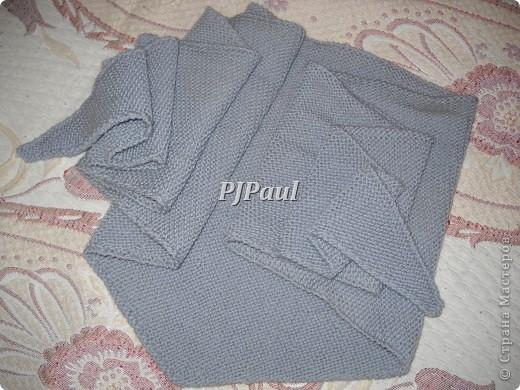 Тучный мешок, бактус и мужской пуловер фото 3
