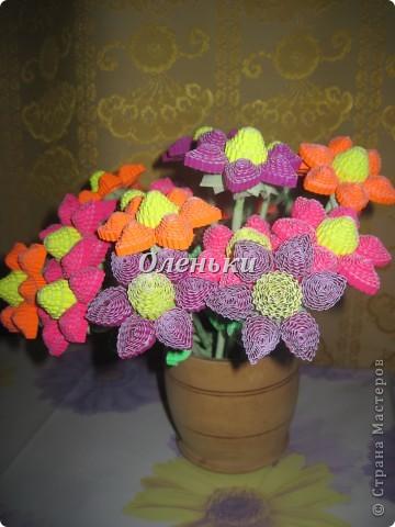 Из гофрокартона накрутили цветы фото 7