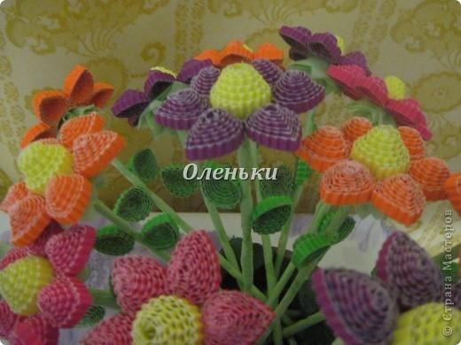 Из гофрокартона накрутили цветы фото 1