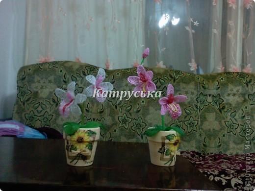 ТАкие бисерные розы делала около 3 лет назад нашла фото думаю покажу. фото 4