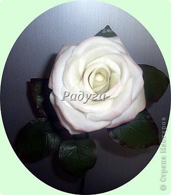 Ну и вот они мои первые розы.Мой первый букет.Наконец я его слепила.Это вторая роза. фото 2
