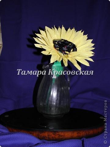 """Конфеты """"Чёрный граф"""" фото 1"""