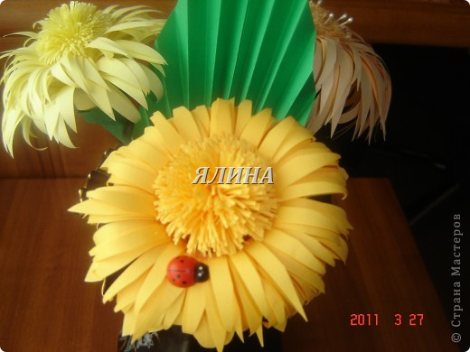 Цветут цветы... скворчат скворцы... фото 4