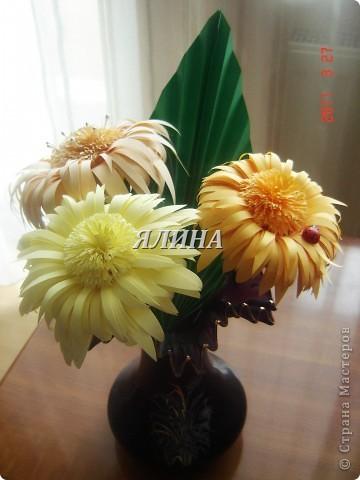 Цветут цветы... скворчат скворцы... фото 1