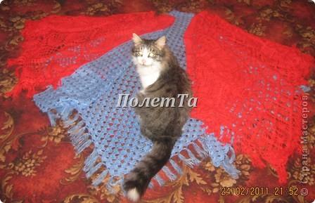 Осенью настроение было на ноле,искала в интернете то,чем можно заняться.И увлеклась шалями!Получилась маленькая коллекция.  Любимый кот Тяпа инспектирует вязание! фото 1
