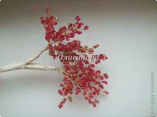 """Сначала я сделала """"Серебристую сакуру""""...   http://stranamasterov.ru/node/169456   , она получилась такой в силу обстоятельств...  Это """"Рубиновое дерево"""" я делала таким ,совершенно, сознательно... Во-первых,  подумала...,если есть серебряное , почему-бы не сделать золотое? Кроме того, у меня был стаканчик  ...рубинового цвета...., а он хорошо сочетается с золотом...  Я, все-таки, решила """"посадить"""" дерево ,именно, в него, хотя...низкие подставочки, также, как и многим, мне нравятся  больше... фото 19"""