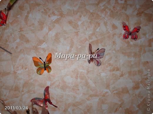 Бабочки летают, бабочки.... фото 1
