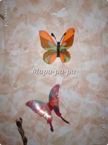 Бабочки летают, бабочки.... фото 2