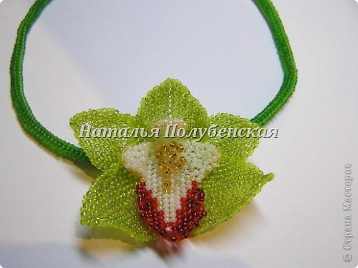 Моделирование Орхидея Мой