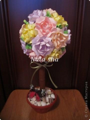 Мои цветочки фото 4