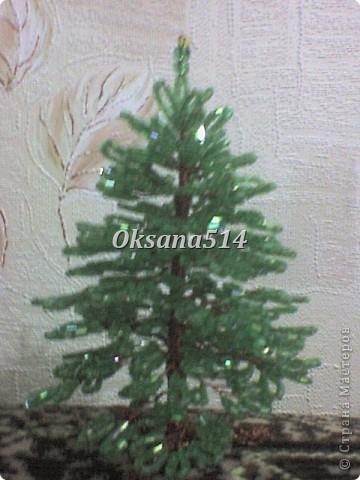 Мое первое деревце  фото 2