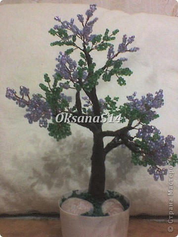 Мое первое деревце  фото 4