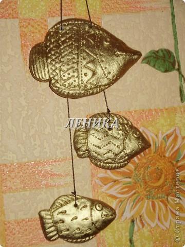 Рыбки золотые