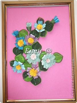 Кампсисс- цветок -лиана фото 3