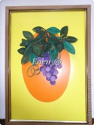 Кампсисс- цветок -лиана фото 4