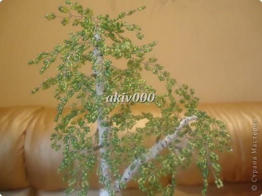 Мое первое деревце из бисера (надеюсь не последнее). Очень понравилось плести. фото 6