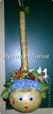 Муженёк да жёнушка. Эти сувениры-обреги  делаются из бутылочной тыквы Лагенарии. Это достаточно большие плоды, размером 35-50см. фото 2