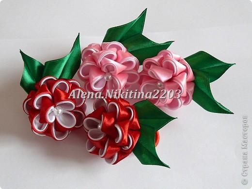 Резиночки розы-пионы фото 1