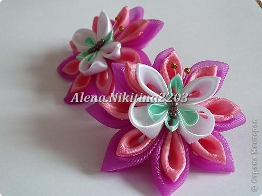 Резиночки розы-пионы фото 4