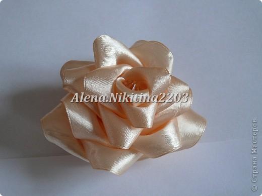Резиночки розы-пионы фото 7