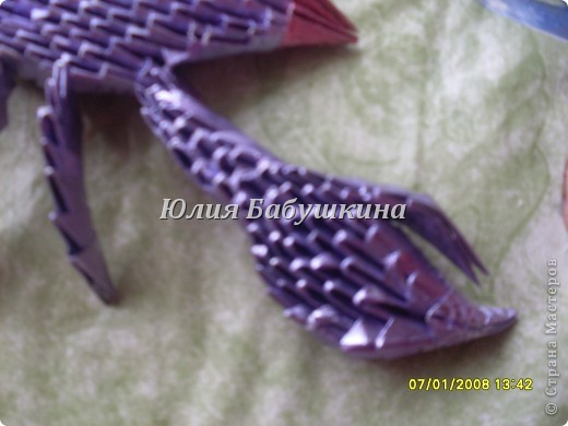 скорпион фото 5