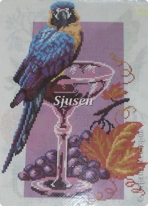 Была недавно на выставке ДПИ, запал в душу сюжет одной вышивки - попугай, восседающий на бокале красного вина. Зарисовала и насыпала по памяти...  фото 2