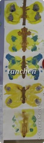 Бабочки, сделанные ребятами 5-6 лет, обклеили бабочки скрученными в шарик гофробумагой фото 6