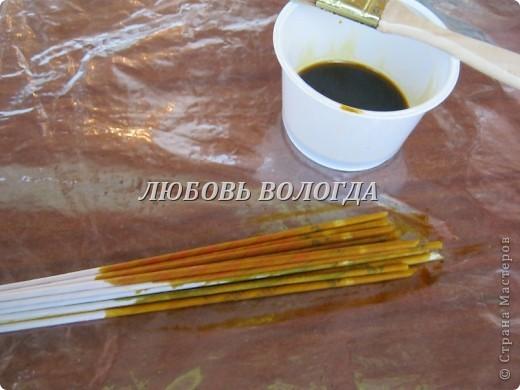 Для окраски нам понадобятся трубочки, морилка ВОДНАЯ, кисточки, плошки, в которые будем наливать краску, большая клеенка, на которой будем красить, тряпочка, протирать клеенку между разными цветами окраски. фото 3