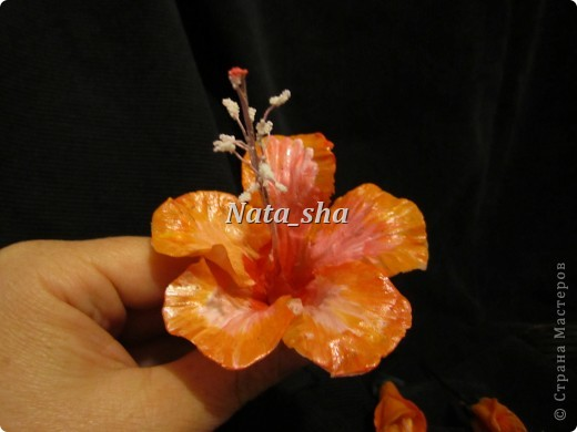 """Приветик всем ) Есть в моем цветочном хозяйстве чудесный Гибискус ,решила так сказать """"поподражать"""" природе.Что у меня получилось - судить вам)) фото 3"""
